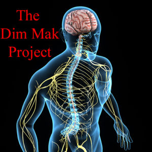 Free Dim Mak Project Video